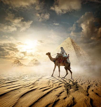 Bedouin on camel near pyramids in fog Foto de archivo