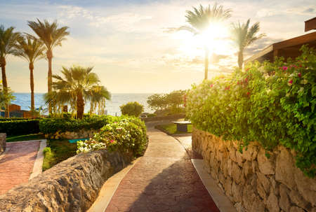 fense: Way to beach of the red sea at sunset