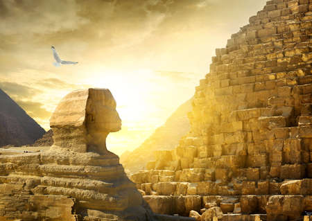 ancient bird: Great sphinx and pyramids under bright sun Stock Photo