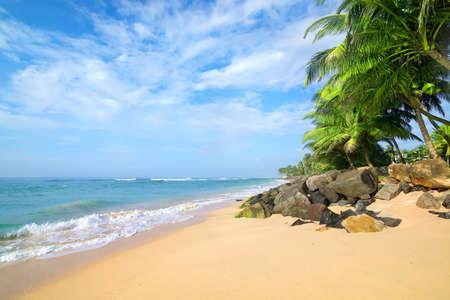 azul turqueza: Las piedras y los árboles de palma en una playa de arena de Gala en Sri Lanka