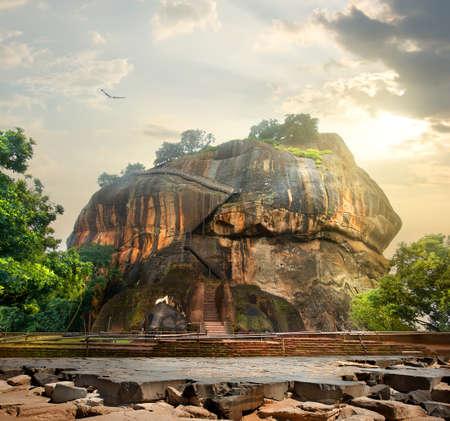 sigiriya: Bird over mountain of Sigiriya in Sri Lanka