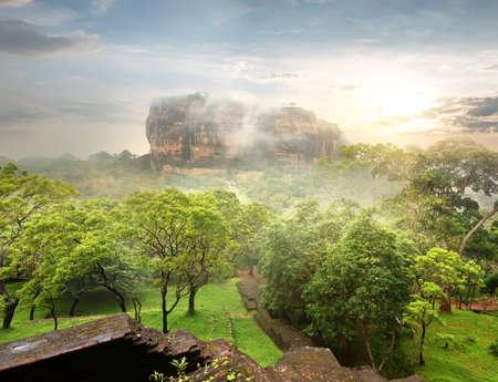 sigiriya: Green garden near Sigiriya at sunrise, Sri Lanka