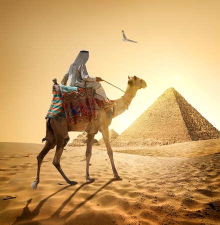 Beduinen und Vogel in der Nähe der Pyramiden in der Wüste Standard-Bild - 54300928