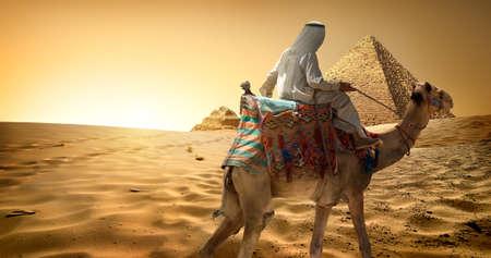 desert sand: Bedouin on camel in sand desert near pyramids