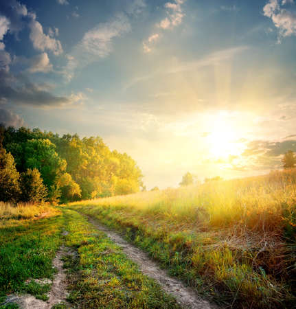 folliage: Sunbeams and country road in the autumn
