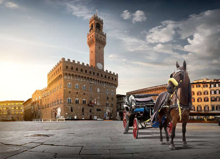 Horse on Piazza della Signoria in Florence at dawn, Italy 스톡 콘텐츠