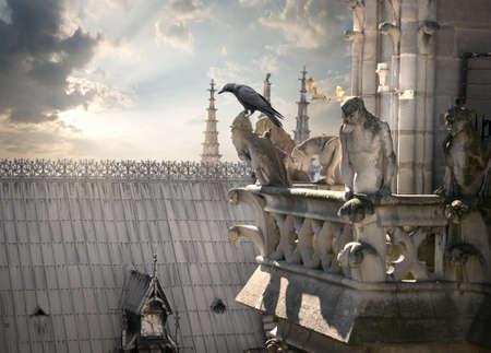 gargoyle: Chimeras on Notre Dame Stock Photo