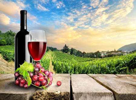 Wine with grape on a background of vineyard