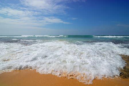 Foamy wave of the sea