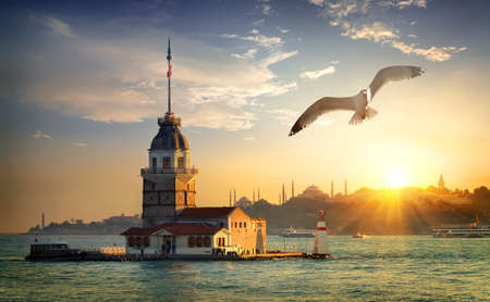 Seagull and Maiden Tower