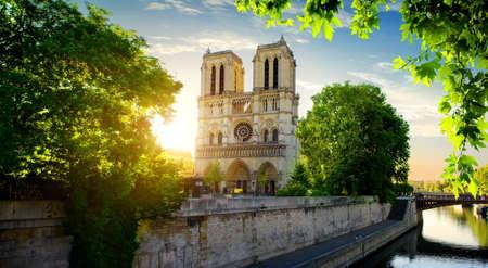 Notre Dame op Seine Stockfoto
