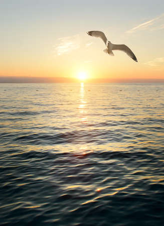 素晴らしい夕日のシーン