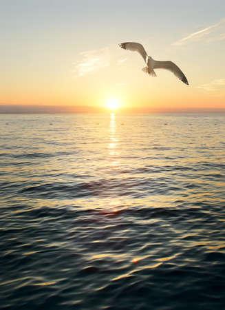 Prachtige zonsondergangscène