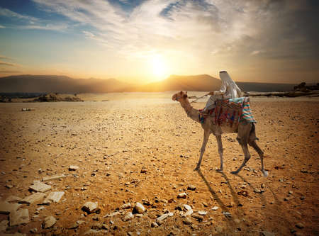 Journey in desert