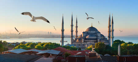 Mosque and Bosphorus in Istanbul