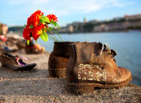 Zapatos de embarque del Danubio