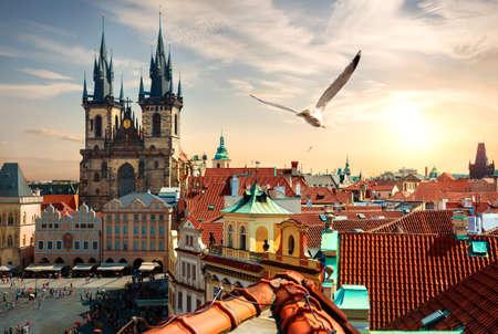 Summer evening in Prague