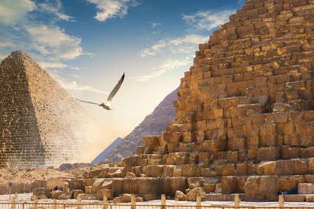 Gyramids in sand deser