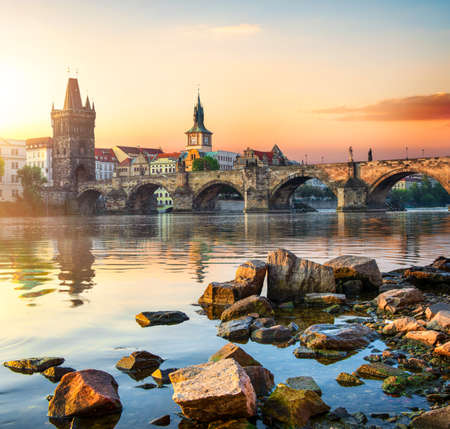 Charles Bridge in Prague 免版税图像