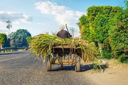 Egyptische boer in een kar Stockfoto