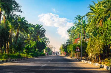 Road along of Nile Reklamní fotografie - 122413918