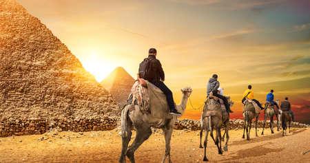 Camel Caravan and Pyramids 写真素材