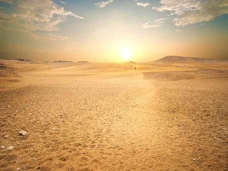 Sandy desert in Egypt 스톡 콘텐츠