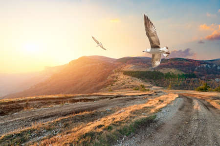 Autumn mountains of Crimea 版權商用圖片