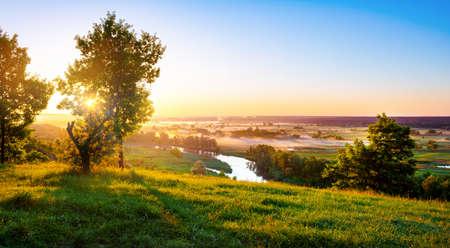 River in summer 版權商用圖片
