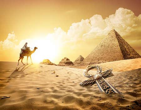 Kameel in de buurt van piramides Stockfoto