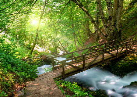 Bridge over the Tara river in the Montenegro