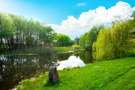 Landscape pond and field Banco de Imagens