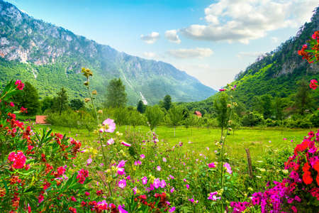 National park Montenegro