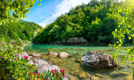 Mountains and the Tara river Banco de Imagens