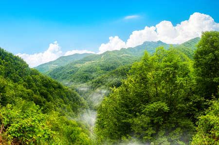 Durmitor National park Montenegro Banco de Imagens