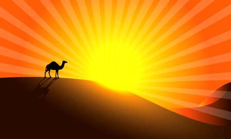Camel in Desert.