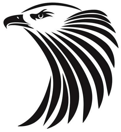 eagle head:  Illustration of a head eagle