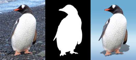 Penguin with mask Фото со стока