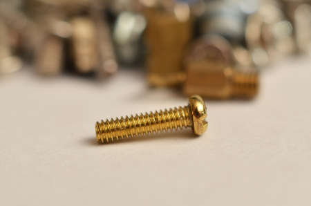 Screw made of iron and brass in the shape of a round rod extends with the thread from end to top called a round head that is larger than the size of the threaded rod