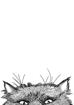 Sly cat looks out from behind the table. Sketch cat for decoration design. Vector graphic. Isolated vector illustration. Animal head in trendy style. Outline style. Funny illustration. Place for text