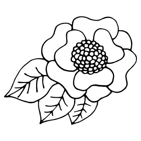 Ornamental leavesand flowers in Doodle style. Hand drawn illustrations on white background. Black silhouettes. Elegant floral elements. Decoration postcards, magazines, site, books.