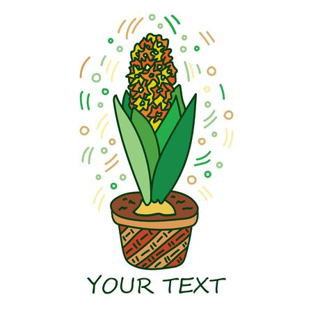 Potted flowers are drawn in doodle style. Flowers in pots painted in vibrant saturated colors. Decorative Hyacinthus house plant sketch illustration for print, mobile, postcards, cover art, site. Vetores