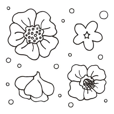 Set of ornamental flowers in line art style. Hand drawn illustrations on white background. Black elegant floral elements set. Decoration postcards, magazines, site, books. Four different flowers.