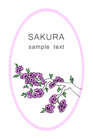 The branch of a cherry tree. Japanese cherry for decorative design. Isolated white background. Floral vector illustration. Sakura vector flower. Decorative frame. Japanese culture. Spring period. Ilustrace