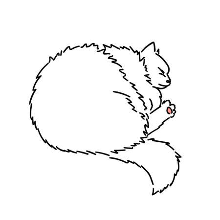 Drawing of a cute sleeping cat curled up in a ball. Black and white illustration of an animal. Paw with a pink pad. Realistic image of an animal. Stock vector illustration. Linear style. Furry animal