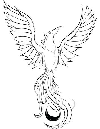 Phoenix sketch Stock Vector - 5461283