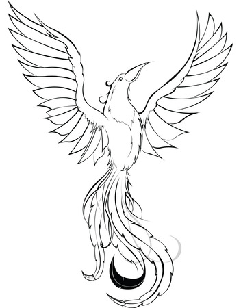 Phoenix sketch Illustration