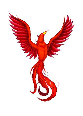 chinese phoenix: Phoenix Stock Photo
