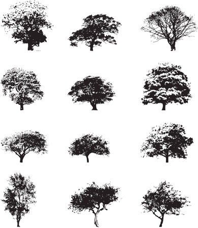 Set of trees Stock Vector - 5469828