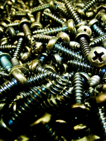 A lot of coated steel screws photo